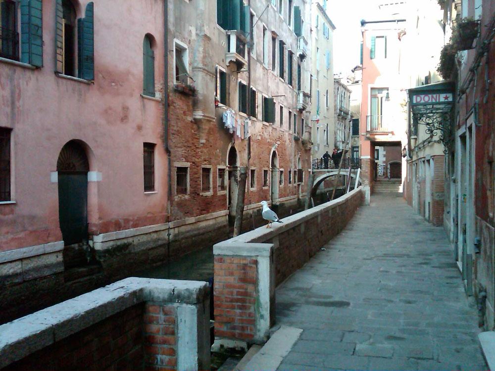 Venice_008_1000